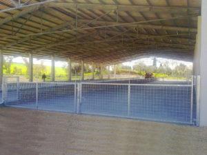 recinzioni3